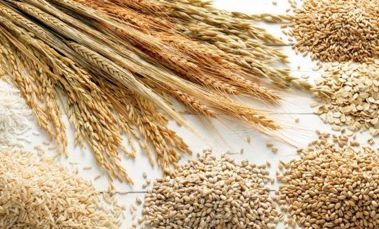 Виды зерновых культур